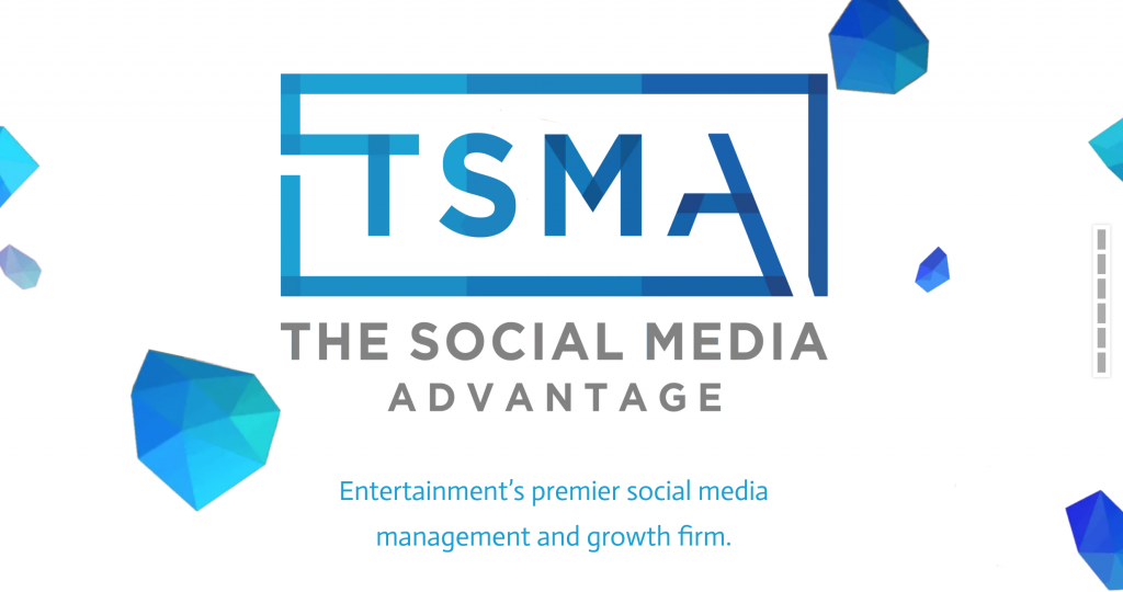 TSMA Consulting